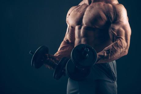 Stavba kosterního svalu